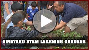 Vineyard STEM Learning Gardens