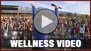 Wellness Video